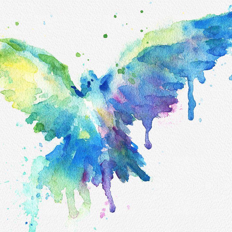 Gogivo_2487_bird