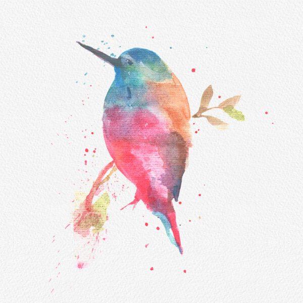 Gogivo_2948_sparrow