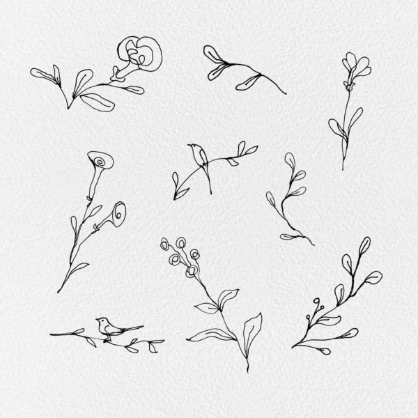 Floral lines clipart