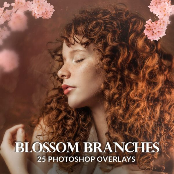 Painted blossom branches photo overlays
